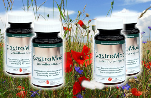 Gastro-Mod 4er Vorteilsangebot