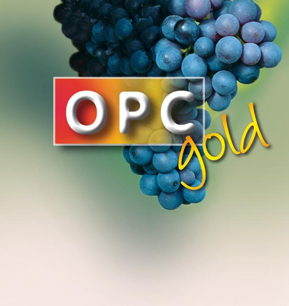 opc-plus_bs