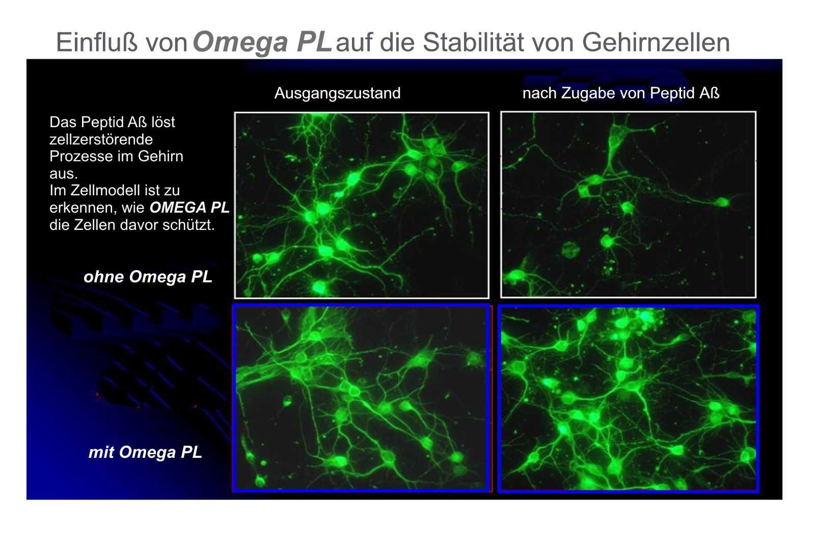 Schutz vor Zellveränderungen durch OMEGA PL